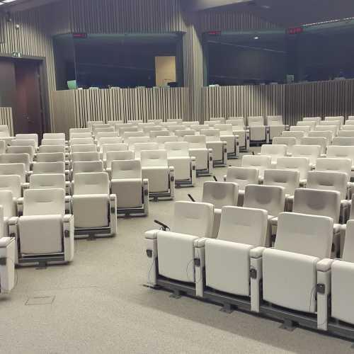 vooraanzicht European council grijze op maat gemaakte stoelen
